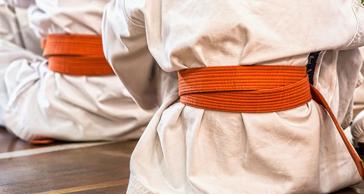 Ashido Karate Veendam