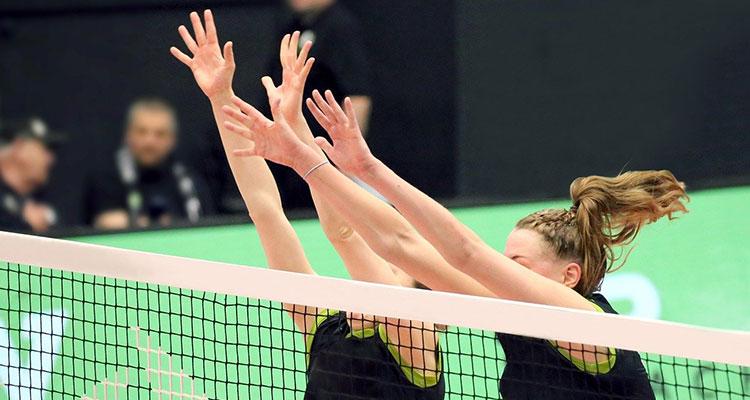 Volleybal vereniging LIS Wildervank